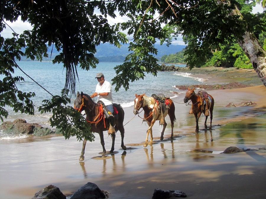 Circuit à dos de cheval au Costa Rica